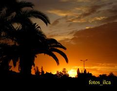 Pôr do Sol (fotos_ilca) Tags: portugal fotosilca 2019 pôrdosol sunset entardecer nuvens clouds baixadabanheira parquezecaafonso