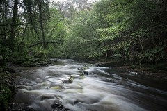 Brock Bottom River (Taken By Me Photography) Tags: walk woods woodland lancashire lancs brockbottom nikon north takenbyme takenbymephotography wwwtakenbymephotographycouk tree trees river wet water streaming outside outdoors countryside country scene