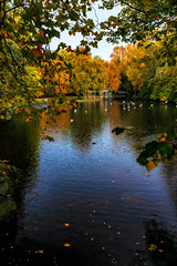 autumn on the green (johnoreillydesign) Tags: autumn fall autumncolours dublin ireland trees park