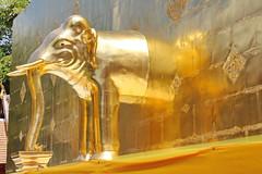 Wat Phra Singh in Chiang Mai 5.9.2019 2121 (orangevolvobusdriver4u) Tags: archiv2019 2019 thailand totallythailand chiangmai norththailand temple tempel wat watphrasingh gold elefant elephant skulptur scuptur