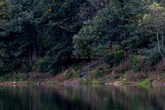 Colours of Nature (leonardocafagna) Tags: colorful colors color nature lake shadow beautiful girl woman landscape italy varese lombardy ghirla photo photography canon eos80d autumn natura natgeo naturephotography