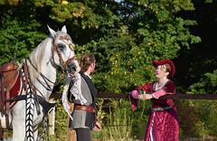 Spectacle équestre (manon.sln) Tags: equitation spectacle équestre neuville cheval royauté chevalier