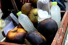 DSCF8600 (Indonesia Documentary Photographer) Tags: buah lontar siwalan borassusflabellifer asianpalmyrapalm