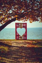 <3 (zedspics) Tags: balaton szigliget magyarország hungary hongarije süllőfesztivál ungarn plattensee 1910 zedspics autumnleaves autumn fall