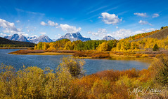 Fall Color in the Tetons (Mimi Ditchie) Tags: grandtetonnationalpark grandtetons river snakeriver mountains clouds fall fallcolor oxbowbend morning sky trees turningleaves panorama landscape nationalpark national outside nature blue mimiditchie mimiditchiephotography getty gettyimages
