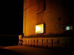 2337/1751 (june1777) Tags: snap street seoul night light bokeh fujifilm gfx 50r helios 442 58mm f2 russian m42 12800 velvia nonhyeondong gangnam