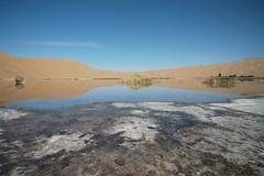 #travel #autumn #innermongolia #leica #m10p (Kevinlux) Tags: travel autumn innermongolia leica m10p