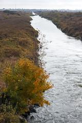 Toamna pe Dâmbovița (Dumby) Tags: landscape ilfov românia river dâmbovița outdoor nature fall autumn canoneos40d fujinon55mm