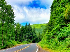 Into the green (World-viewer) Tags: highway road roadway artistic greenery vegetation forest leaves landscape color colour colourful colorful beautifu nice drive country iphone ngc mbpictures national geographic oregon nature iphone8 iphone8plus plus travel explore wander unexplored