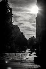 Belgrade (mladencoko) Tags: revuenonspecial35mm fujifilmxe1 bnw blackandwhite monochrome contrast light sun street outdoors urbanlandscape belgrade