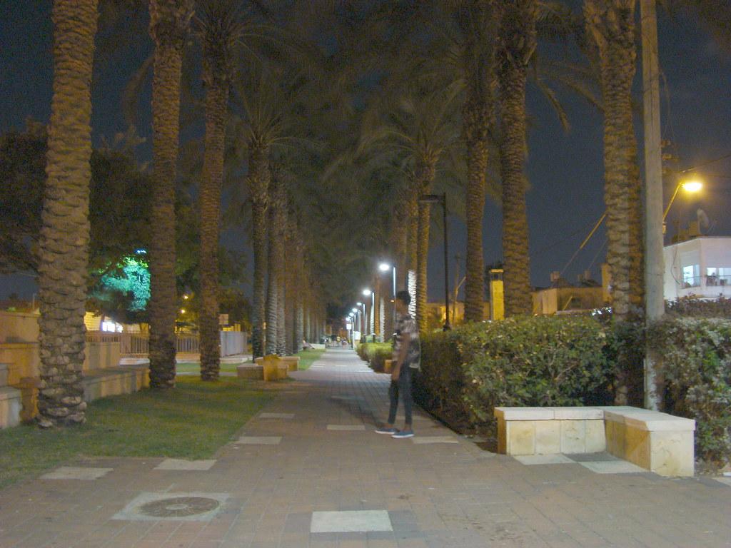 фото: Парк в пригороде Хайфы