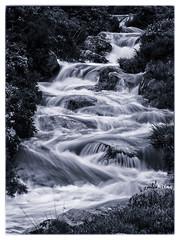 Flowing Zig Zag Streem (kckelleher11) Tags: 2019 40150mm ireland olympus september bw black cyanotype em1 f28 flowing mzuiko omd stream water white wicklow zag zig