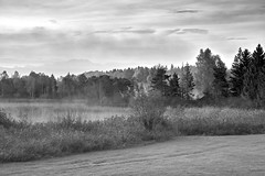 Autumn morning at the Seeleiten-See (Alexander Kraus) Tags: sony 24105mm bw sw blackandwhite landscape morning mist lake moutains fall autumn