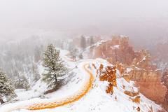 Bryce Canyon National Park (garshna) Tags: snow brycecanyonnationalpark utah landscape outdoors nature trail fog trees hoodoos hiking