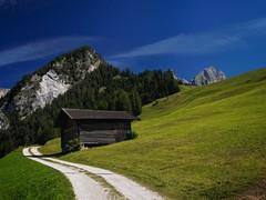 pure luck (paddy_bb) Tags: dolomites wolken clouds rosengartenmassiv microfourthirds italien alps outdoors altoadige dolomiten 2019 alpen travel südtirol mountain olympusomd sun bergwelt wiese italia berge wandern paddybb alpine