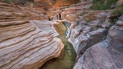 Matkatamiba Canyon (MyKeyC) Tags: matkatamiba michaeljcohen mmykeyyahoocom instagramcommykeycohen flickrcomphotosmykeyc wwwfacebookcommikecohen182 mykey4photogmailcom grandcanyon adamschallau landscape canyon arizona
