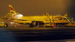 P3101838-2 (hex1952) Tags: yul trudeau winter deicing