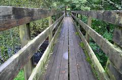 Footbridge, Clunie Water (Neilhooting) Tags: scotland cairngorms braemar ballater aberdeen caledoniansleeper riverdee