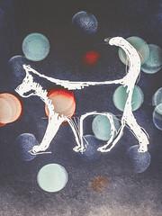 Funky animal (J.C. Moyer) Tags: wit rood blauw kleuren kleur color colour contemporary modern kunst art schets sketch tekening drawing hond cat dog