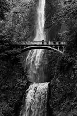 Multnomah Falls (sarah_presh) Tags: waterfall monochrome mono multnomahfalls oregon usa roadtrip nikond850 columbiariver