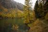 rainy day @Lai da Palpuogna (2) (Toni_V) Tags: m2402291 rangefinder digitalrangefinder messsucher leicam leica mp typ240 type240 21mm superelmarm hiking wanderung randonnée escursione alps alpen bergsee mountainlake palpuognasee laidapalpuogna albulatal graubünden grischun grisons rain regen herbst autumn predapalpuognaseebergün switzerland schweiz suisse svizzera svizra europe ©toniv 2019 191019