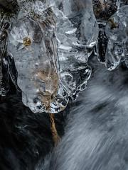 Icetime III (Fjällkantsbon) Tags: doroteakommun höst sverige klöverdalenmedomgivningar lappland borgafjäll evamårtensson västerbottenslän ice is abstrakt abstractart
