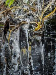 Icetime VI (Fjällkantsbon) Tags: doroteakommun höst sverige klöverdalenmedomgivningar lappland borgafjäll evamårtensson västerbottenslän ice is abstrakt abstractart