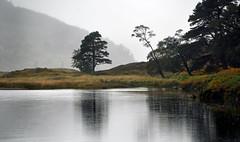 River Dee, Braemar (Neilhooting) Tags: scotland cairngorms braemar ballater aberdeen caledoniansleeper riverdee