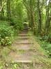 Vane Hill path, Loch Leven