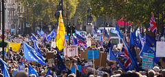 Flags (McTumshie) Tags: 20191018 brexit eu europe london peoplesvote democracy demonstration march peoplesmarch politics londonist