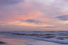 DSC_6138 (marcnico27) Tags: 2019 marcnico27 zandvoort outdoor sky pink sunset zonsondergang beach strand shore clouds lovelyclouds