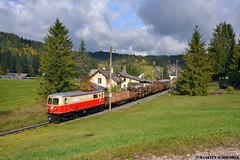 1099.14 @ Mitterbach (Maarten Schoubben) Tags: schmalspurbahnen schmalspur narrow gauge züge güter güterzüge 760 mm