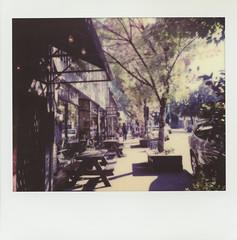 Autumn in Portland (H Polley) Tags: polaroidweek polaroid spectra polaroidoriginals portland autumn 2018 instantfilm