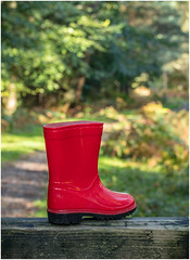 Red Welly Boot (A Journey With A New Camera) Tags: red boots lostboot wellyboots