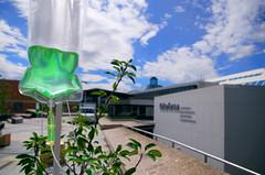 Perfusion (Atreides59) Tags: berlin germany deutschland allemagne vert green bleu blue ciel sky nuages clouds urban urbain pentax k30 k 30 pentaxart atreides atreides59 cedriclafrance