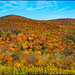 Autumn in the Berkshires