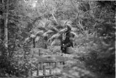(dadou~) Tags: wuhan china chine botanicalgarden nature birthdaygirl leica m6 summicron 50mm dr fujifilm neopan 400 leicam6 analog developedbynick