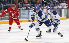 #44 Cole CANDELLA in action (kirusgamewornjerseys) Tags: ohl game worn jersey junior ice hockey cole candella sudbury wolves canada