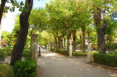 979 Sicile Juillet 2019 - Raguse, Giardino Ibleo (paspog) Tags: sicile sicily sicilia raguse juli july juillet 2019 giardinoibleo jardin parc park