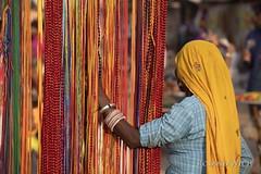 Pushkar Camel Fair (Rolandito.) Tags: pushkar camel fair india indien rajasthan inde asia