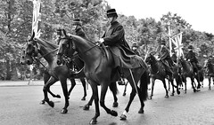 Marching on (Terry Goodyer) Tags: london horses parade march procession marchpast military flag