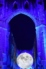 Low Moon Tonight (CoasterMadMatt) Tags: rievaulxabbey2019 rievaulxabbey rievaulx abbey ruinedabbey ruinedmonastery monastery cistercianmonastery cistercian yorkshireattractions attractionsinyorkshire illuminatingrievaulx2019 illuminatingrievaulx illuminating specialevent museumofthemoon museum moon art artworks lukejerram abbeychurch church ruinedcistercianmonastery abbeyruins ruinedabbeysinengland englishruinedabbeys building structure architecture history englishhistory englishheritage northyorkshire yorkshire yorks england britain greatbritain gb unitedkingdom uk europe september2019 autumn2019 september autumn 2019 coastermadmattphotography coastermadmatt photos photographs photography nikond3500