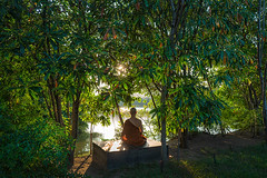Forest Tradition monk (Roberto.Trombetta) Tags: asia thailand bangkok man monk buddhism old zeiss carl batis225 sonyalpha sony7rii religion portrait robe symmetry thai barefoot shoeless sony mirrorless slihouette forest tradition meditation lake nirvana nibbana samsara tree garden quiet peaceful mind master seated sit sitting lotus position half temple wat monastery