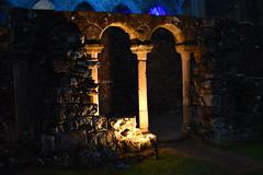 Infirmary Cloister (CoasterMadMatt) Tags: rievaulxabbey2019 rievaulxabbey rievaulx abbey ruinedabbey ruinedmonastery monastery cistercianmonastery cistercian yorkshireattractions attractionsinyorkshire illuminatingrievaulx2019 illuminatingrievaulx illuminating specialevent infirmary cloister cloisters ruinedcistercianmonastery abbeyruins ruinedabbeysinengland englishruinedabbeys building structure architecture history englishhistory englishheritage northyorkshire yorkshire yorks england britain greatbritain gb unitedkingdom uk europe september2019 autumn2019 september autumn 2019 coastermadmattphotography coastermadmatt photos photographs photography nikond3500