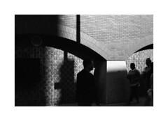 (billbostonmass) Tags: trix 400 ddx 14ddx800min68f film m6 50mm summicron epson v800 boston massachusetts chinatown street photography fall 2019