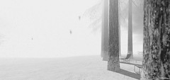 whiteout (Mara Telling:) Tags: sl secondlife furillen photography virtualphotography whiteout