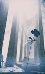 ꓭA⅃ (Mara Telling:) Tags: sl secondlife photography virtualphotography furillen