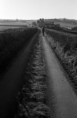 all my memories gather round her (Mano Green) Tags: countryside country road track cumbria england uk january winter 2017 canon eos 300 40mm lens ilford deltra 100 35mm film ilfosol s epson perfection v550 black white