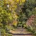 Parc des Rapides (Francois Primeau) Tags: explore