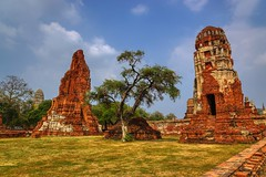 Temple ruins of Wat Mahathat in Ayutthaya, Thailand (UweBKK (α 77 on )) Tags: ayutthaya thailand southeast asia sony alpha 77 slt dslr temple ruins wat mahathat stone red tree historic historical ancient history archaeology archaeological park religion religious buddha buddhist buddhism outdoors